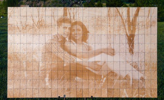 Alternative Guest Book - Photo Peg Board with Laser Engraved Picture and Birch Wood Chips